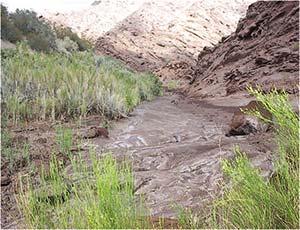 Río arreico ubicado en la localidad de Vinchina, La Rioja. Pueden observarse en la foto las deposiciones de hidrocarburos (manchas oscuras) y sales (manchas blancas).