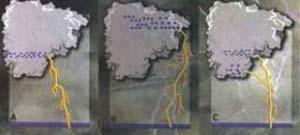Fig 10. Los relámpagos de la nube hacia el suelo pueden ser de tres tipos : A - negativos, B - positivos y C - bipolares