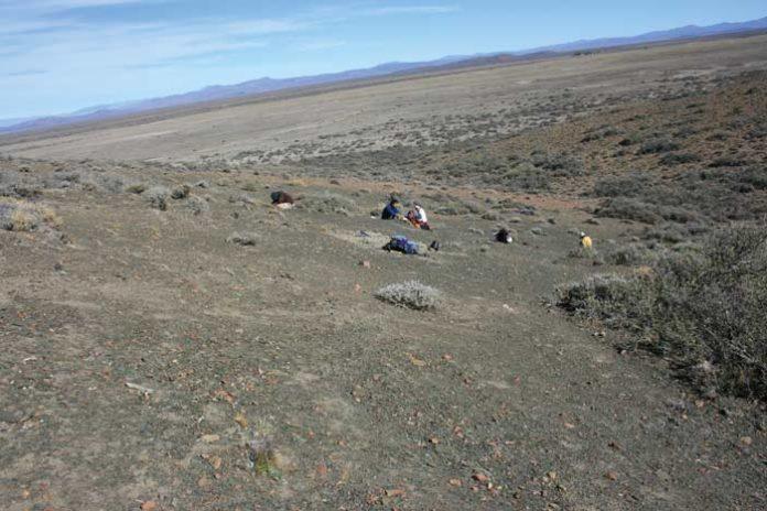 Vicisitudes de la vida marina del Paleozoico tardío